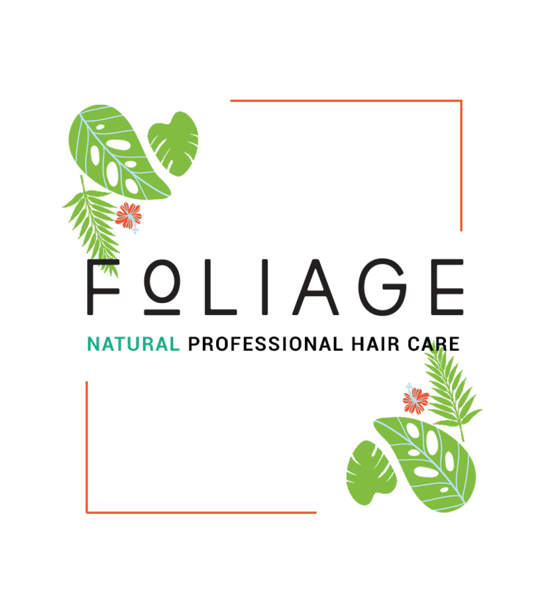 DAVID'S SALON LAUNCHES FOLIAGE PROFESSIONAL HAIR CARE